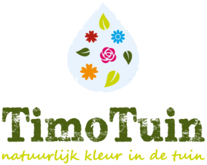 TimoTuin