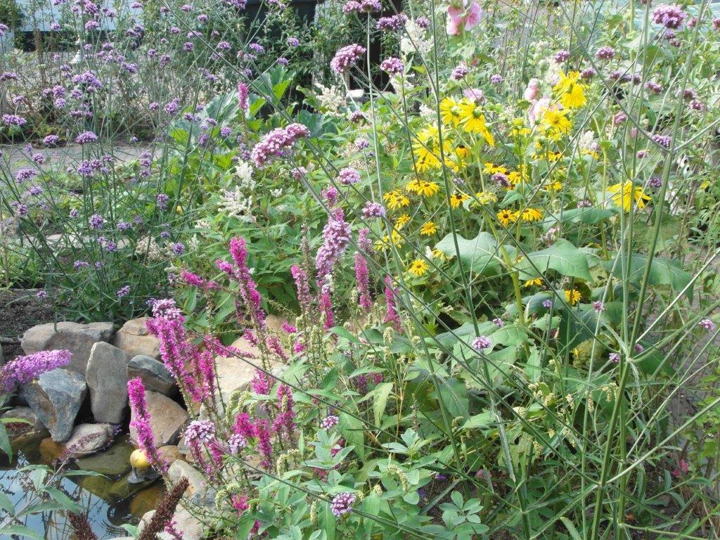 Duurzaam in de Tuin