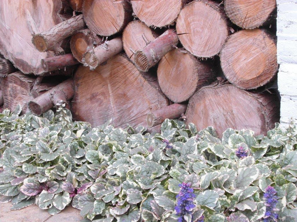 hout in de tuin